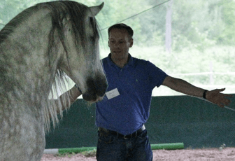 Teilnehmer gibt dem Pferd Anweisungen