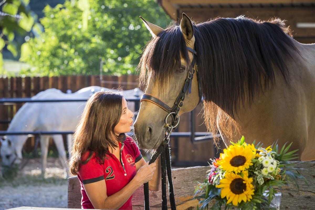 Trainingspferd Atila mit Führungskraft