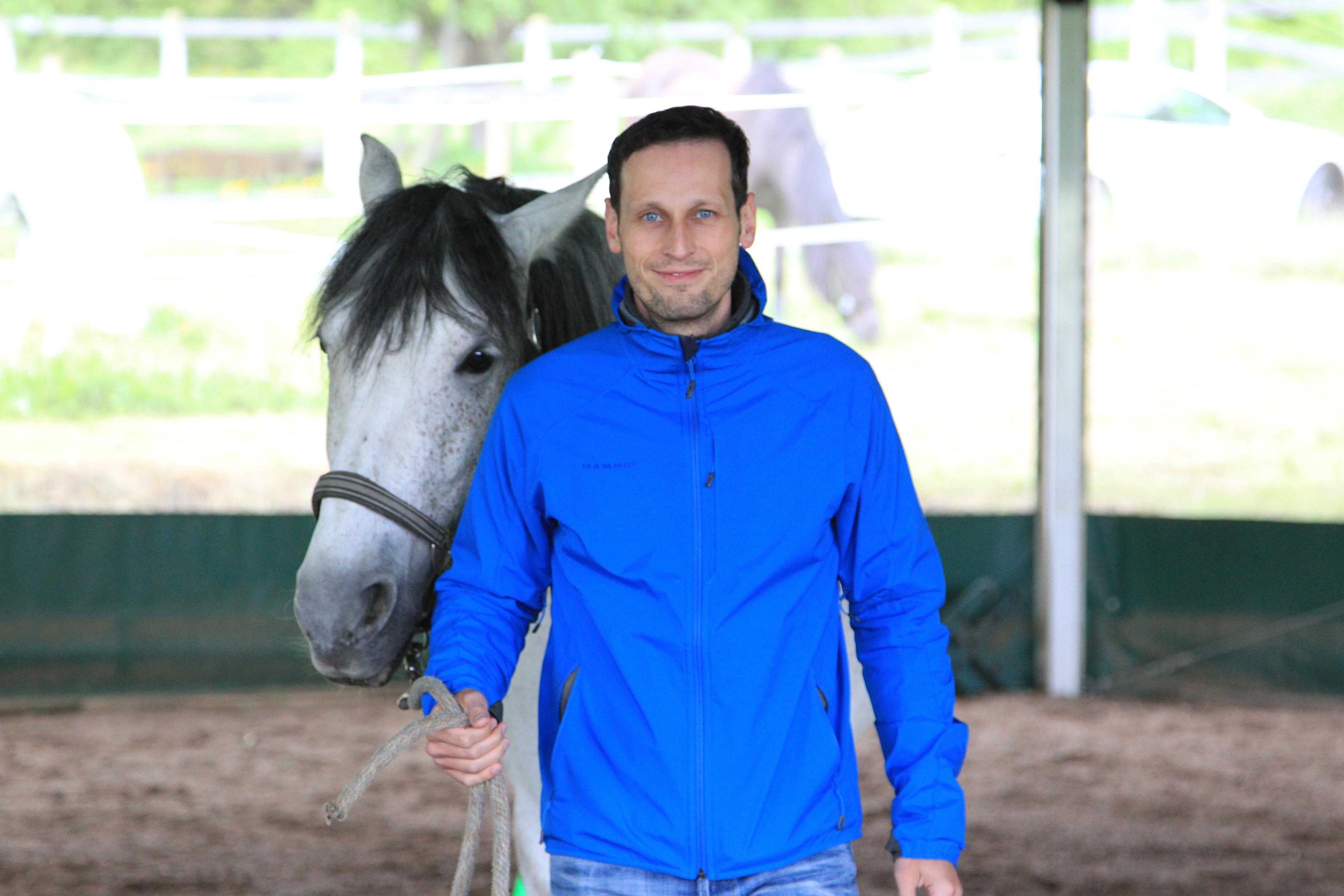 Pferd wird von Führungskraft geführt